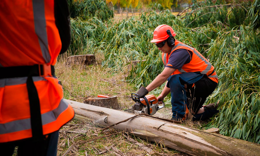 training-ventures-chainsaw-01